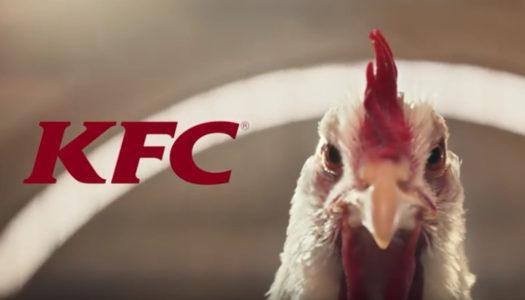KFC – The Whole Chicken