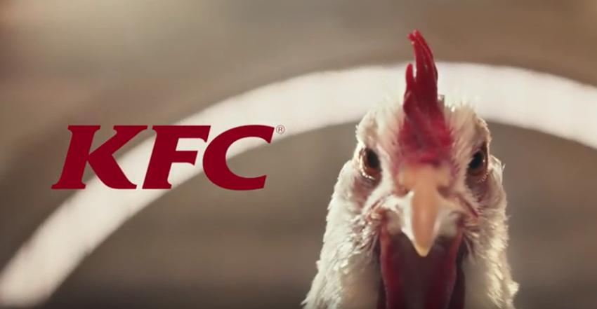 wieciecownecie reklamadnia the whole chicken kfc