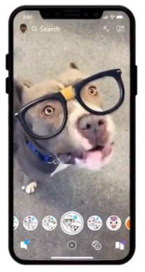 snapchat lens dla psów