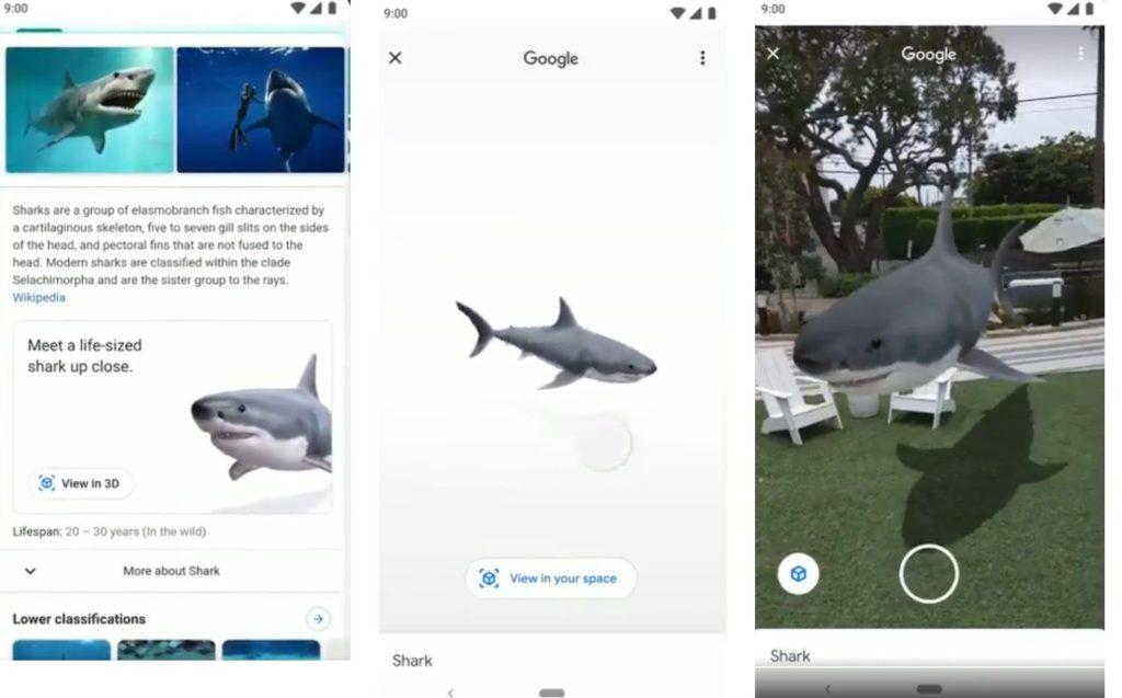 google wprowadza AR w wyszukiwarce